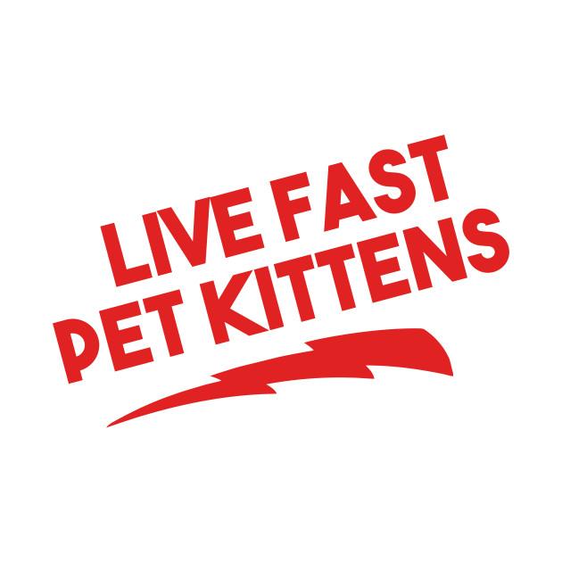 Live Fast Pet Kittens