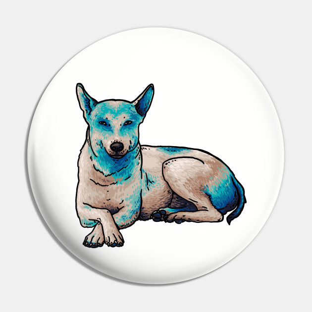 Why is this Dog Blue