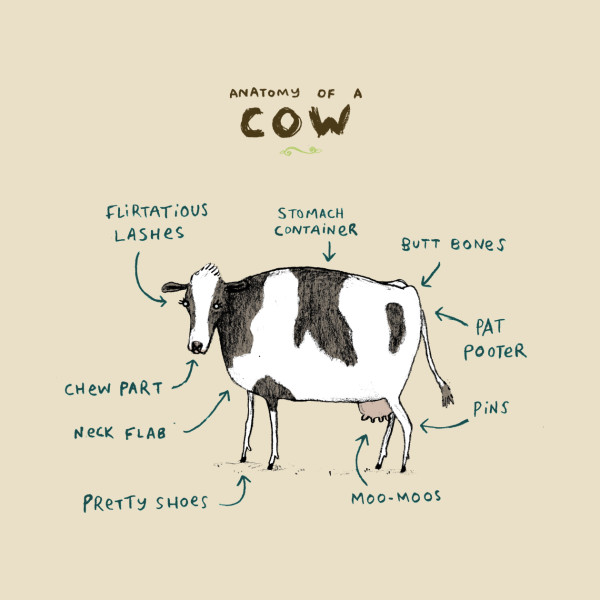 Anatomy of a Cow - Bovine - T-Shirt | TeePublic