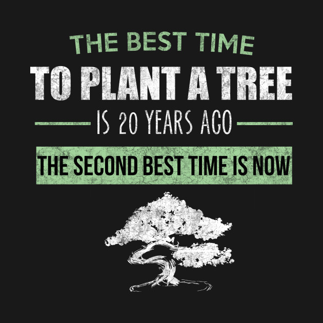 The Best Time To Plant A Tree Chinese Quote T Shirt Nature T