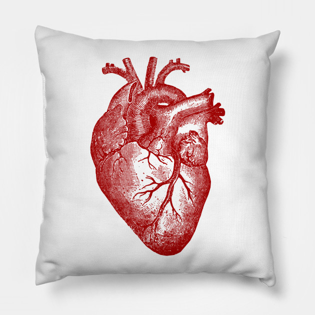 Vintage Heart Anatomy Heart Throw Pillow Teepublic