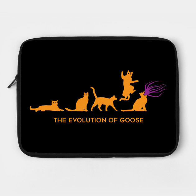 The Evolution of Goose