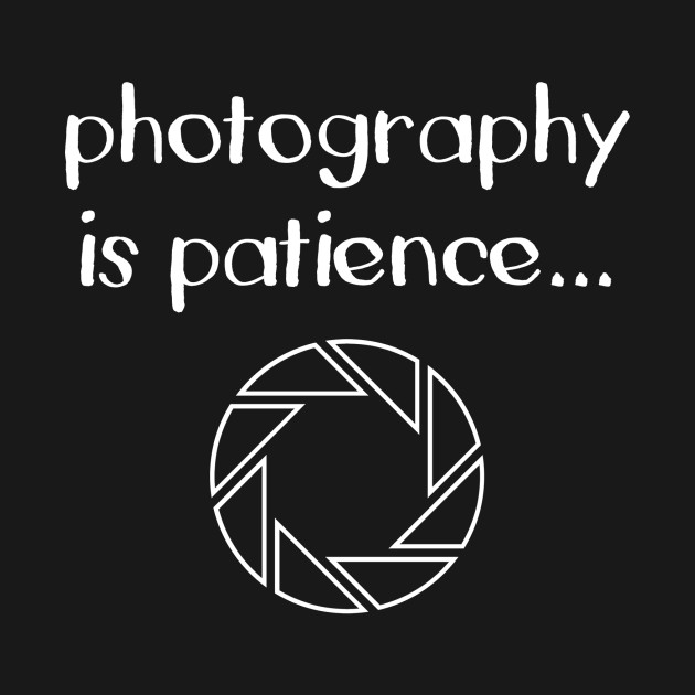 photography is patience