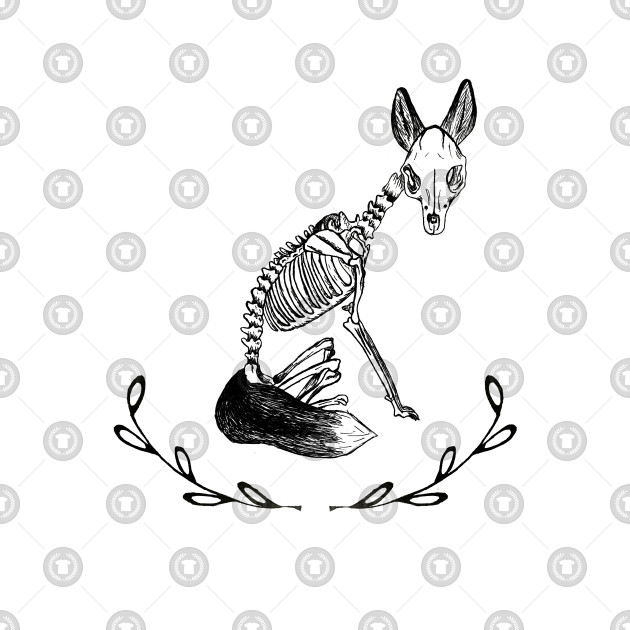 Fox Skeleton