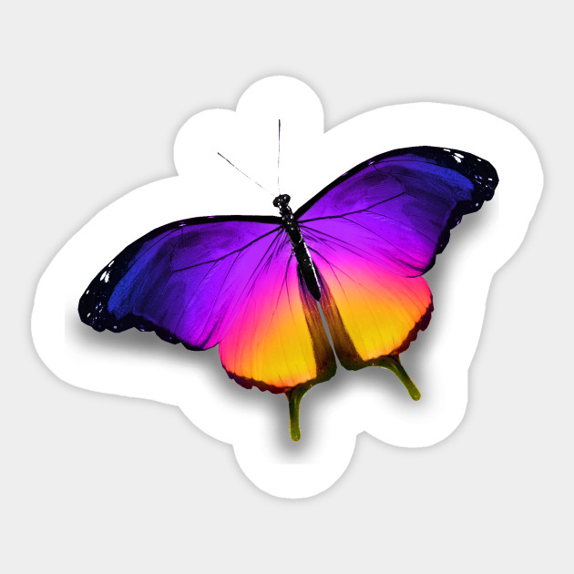 Colorful Butterfly - Nature - Sticker | TeePublic