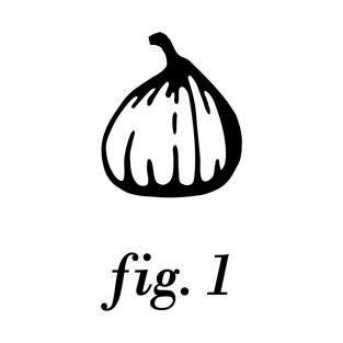 Fig. 1 (black print) t-shirts