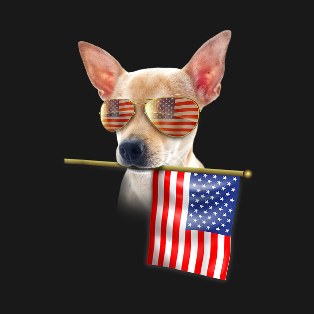 0845ef27111f ... 4th of July Shirt Fun American Flag Chihuahua Dog Lover Gift T-Shirt