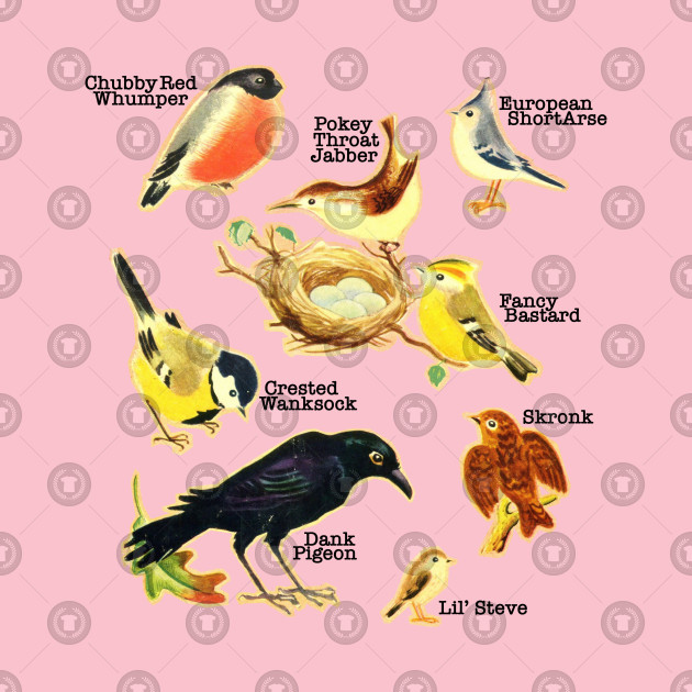 Funny Birds Of The World Names