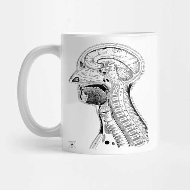 Human Head Anatomy | Medical Science Phsyiology - Anatomy - Mug ...