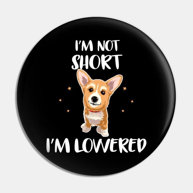Let/'s Pawty I/'m 8 T-Shirt  Corgi Birthday  8th Birthday Party  8th Birthday Gifts  Corgi Lover  Corgi Mom  It/'s My Birthday  I Love