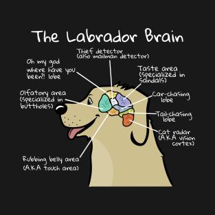9a82e9e8 Labrador Brain Anatomy T-Shirt. by petprints