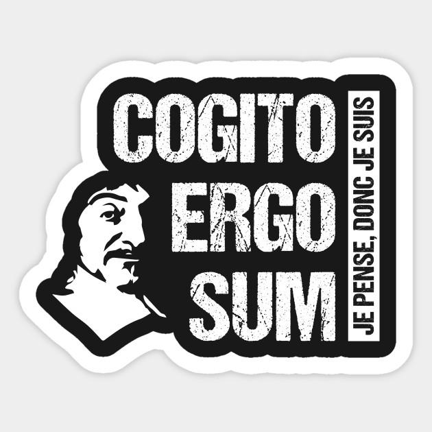 cogito ergo sum  Cogito Ergo Sum Descartes Philosophy T-Shirt French Quote - Cogito ...
