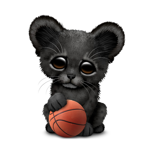 Black Panther Cub Playing With Basketball