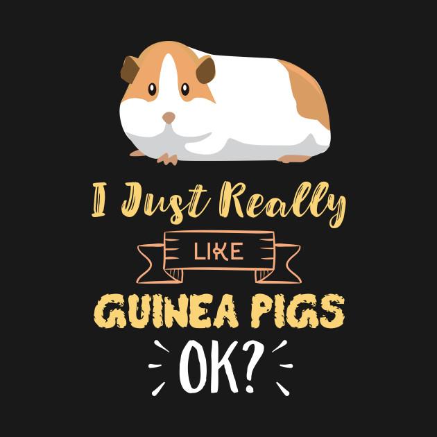 I Just Really Like Guinea Pigs OK? Funny Guinea Pig