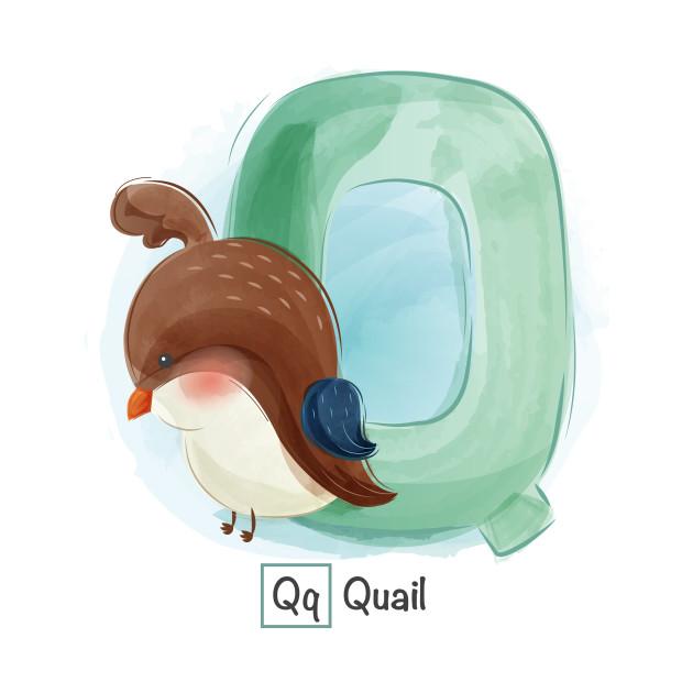 Letter Q For Quail Kids