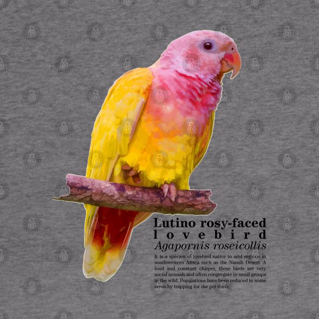 Animal Lovers Parrot Wildlife Hoodies