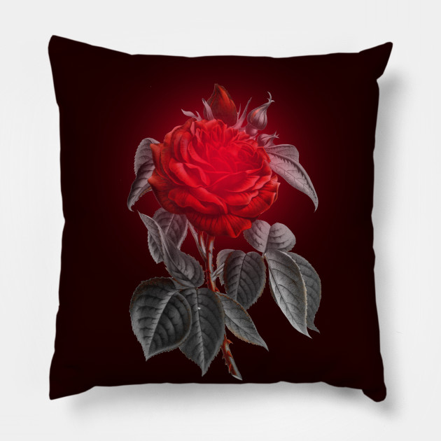 Blood red vampire rose