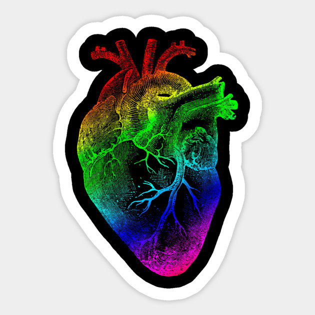 Rainbow Heart Vintage Heart Anatomy Anatomical Heart Sticker