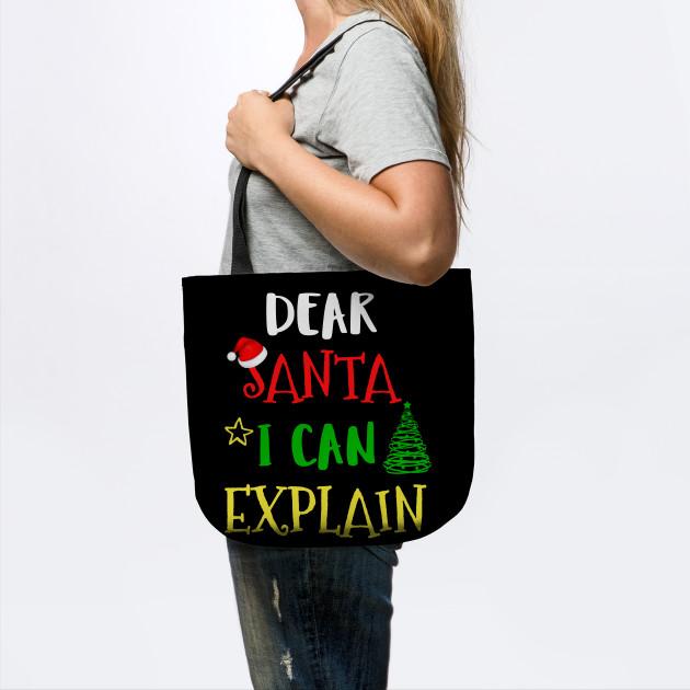 Dear Santa I Can Explain Christmas Xmas Holidays Gift Tee