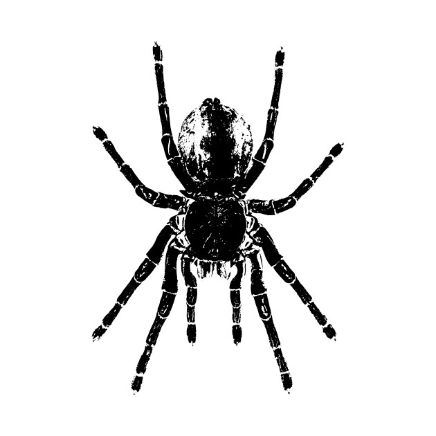 Scary Tarantula Spider Halloween Black Arachnid