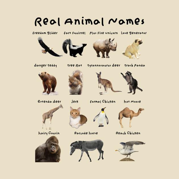Real Animal Names - Animals - T-Shirt | TeePublic