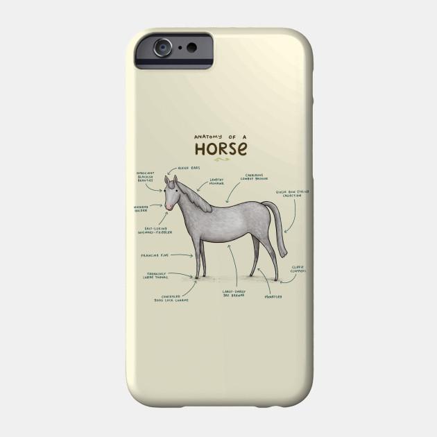 Anatomy Of A Horse Horse Phone Case Teepublic