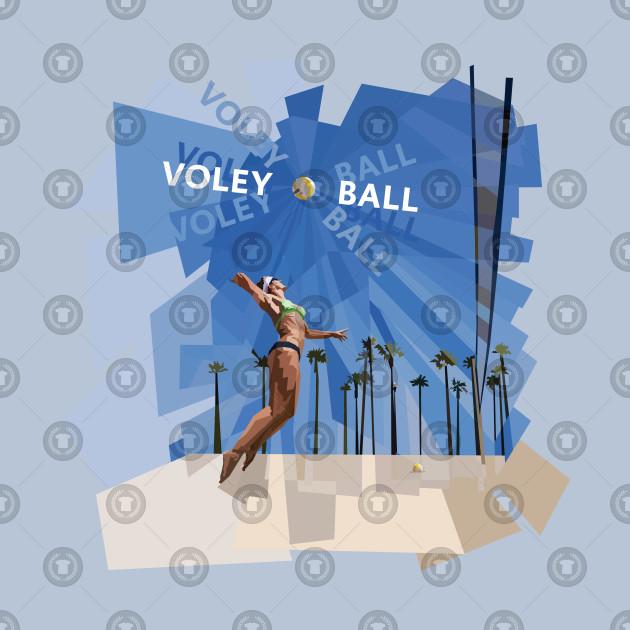 Voley Ball