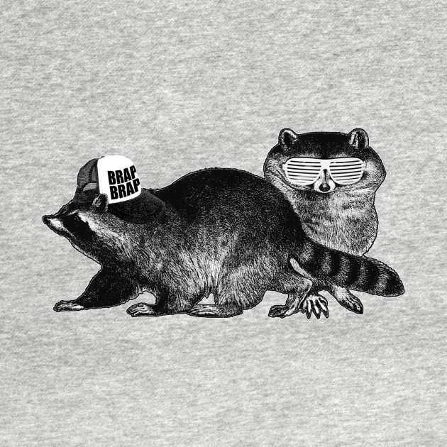 Raccoons: Nature's Teenagers