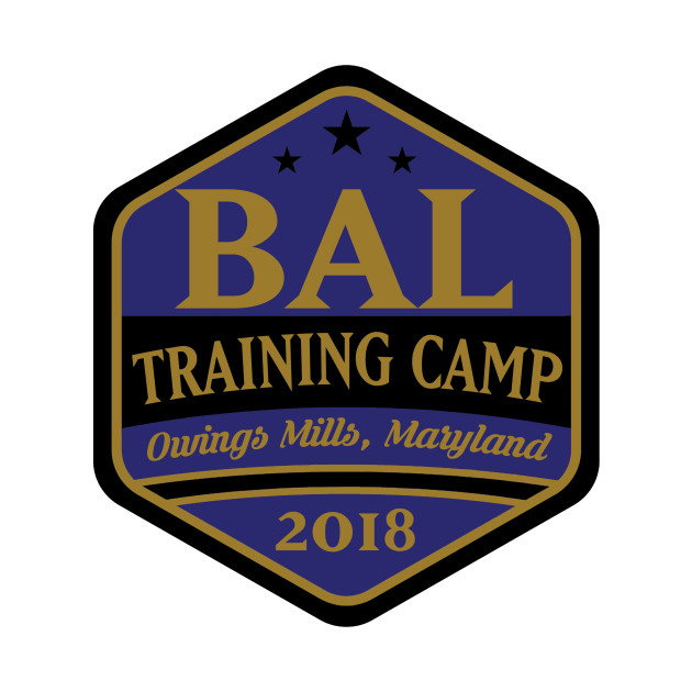 Football TRAINING CAMP Owings Mills, MD!!!