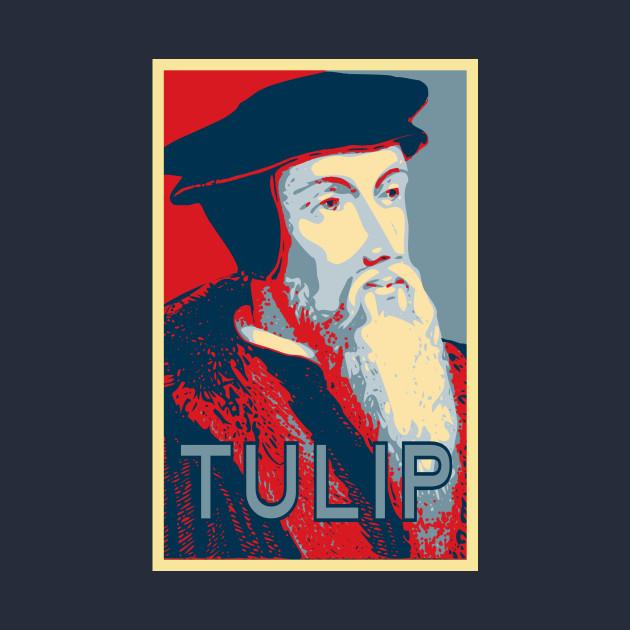 John Calvin TULIP