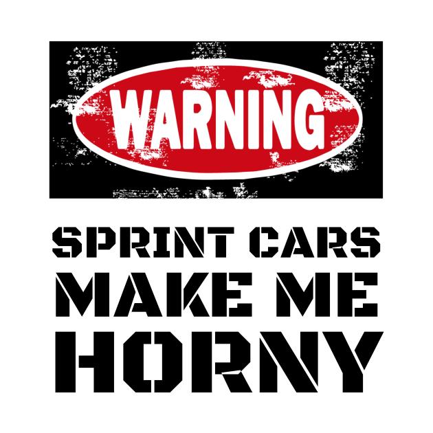 Sprint Cars Funny