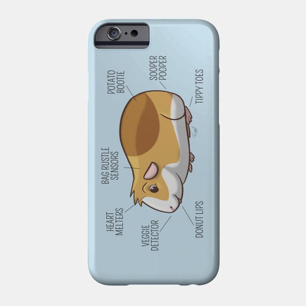 size 40 639fb 30bd8 Diagram of a Guinea Pig