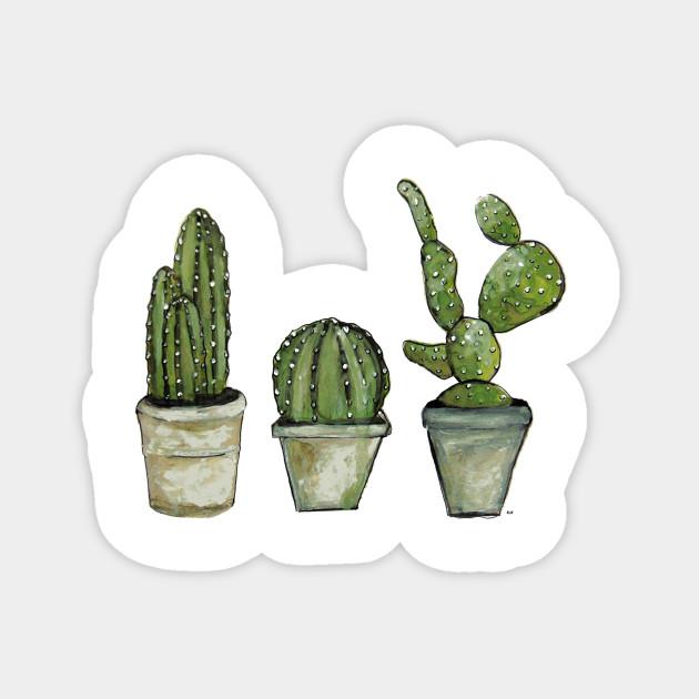 Cactus cactus 1592596 1