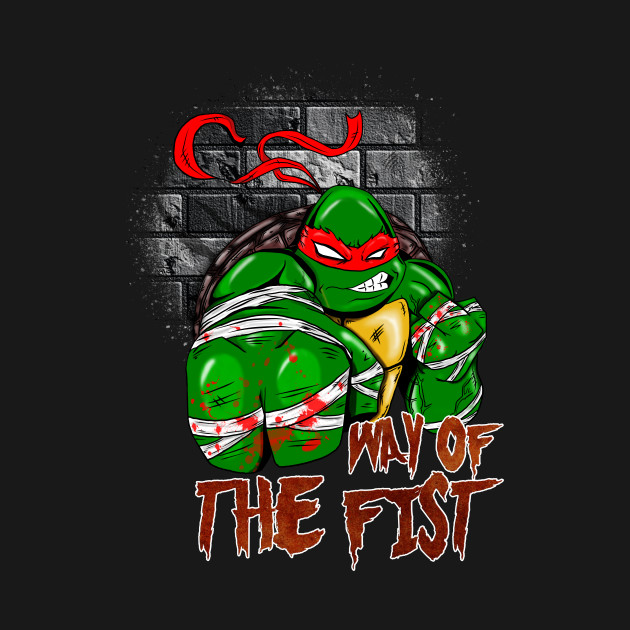TMNT Ninja Turtles Raphael WAY OF THE FIST