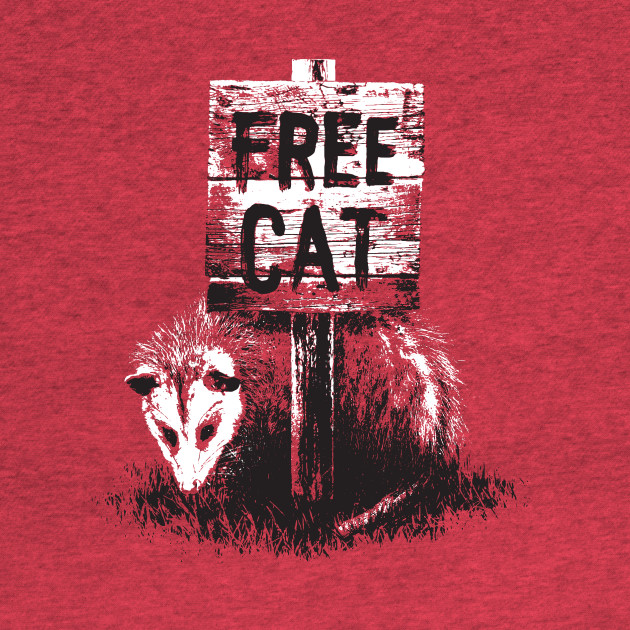 Free cat possum