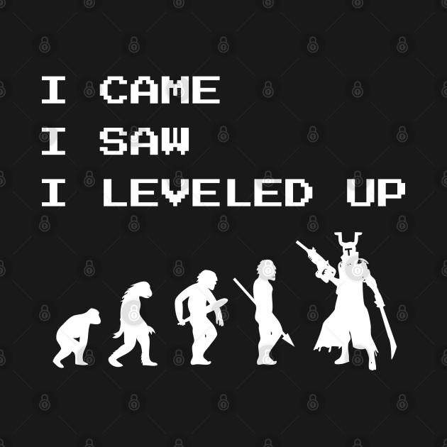 I Came I Saw I Leveled Up Gamer Video Games Fan