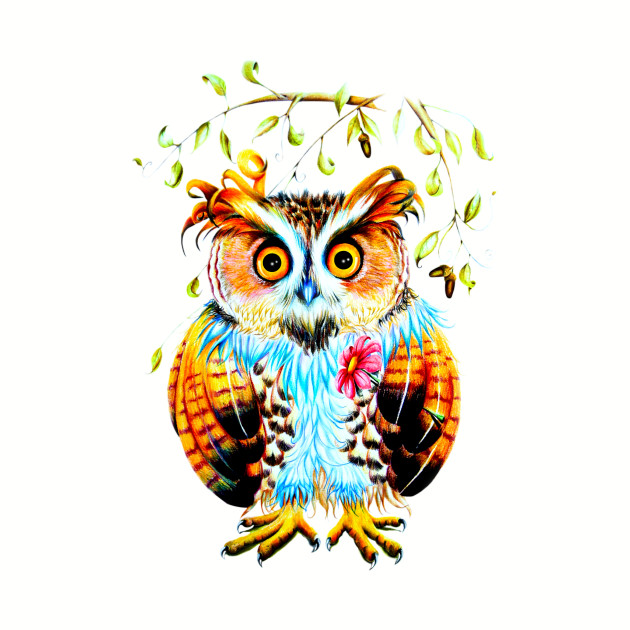 The Most Beautiful Owl