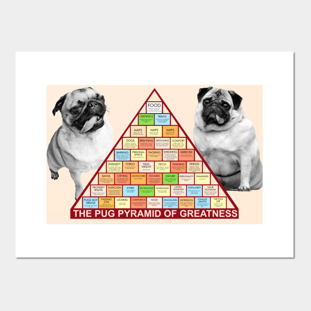 Pug Pyramid Of Greatness Pyramid Of Greatness Posters And Art