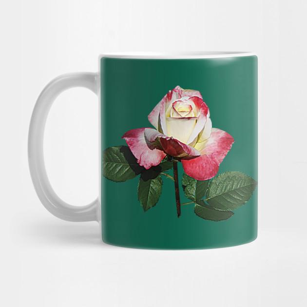 Roses Rosebud Summer Fashion Rose Mug Teepublic