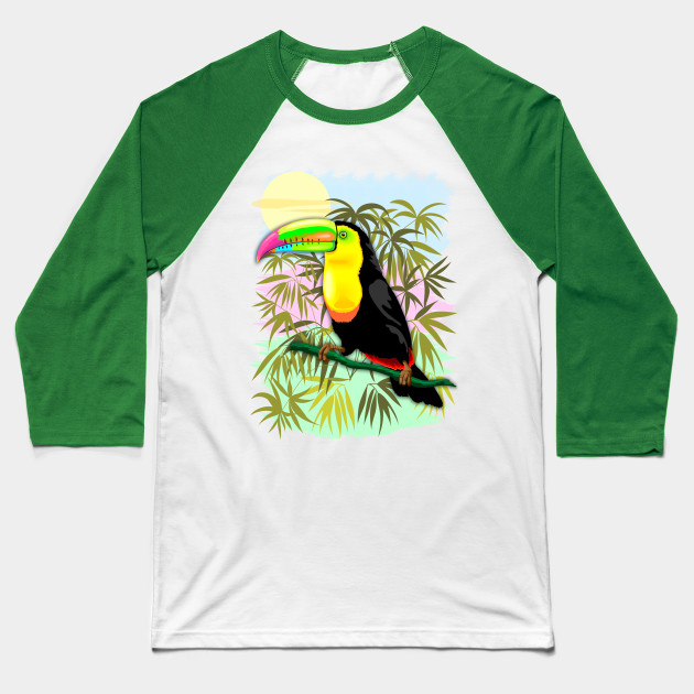 Toucan Wild Bird from Amazon Rainforest