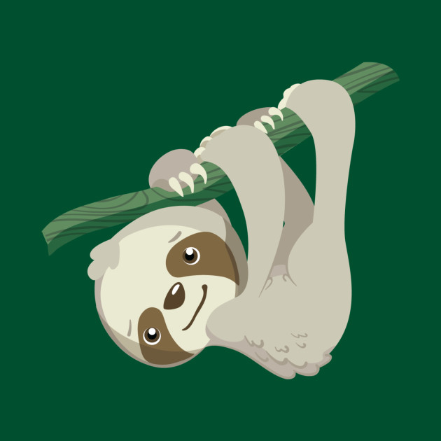 Hang In There, Baby Sloth