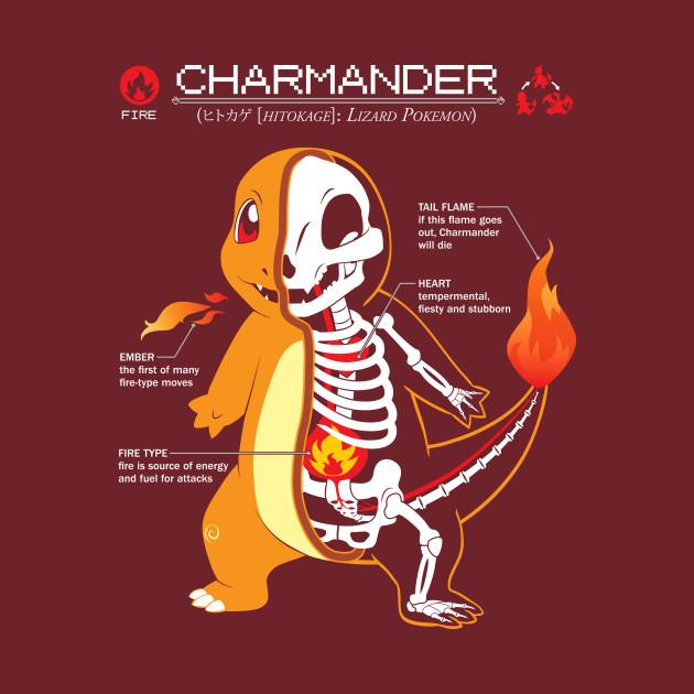 Charmander Anatomy Pokemon T Shirt Teepublic