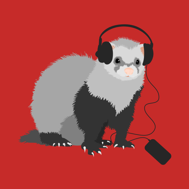 Music Loving Ferret