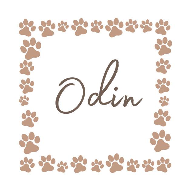 Pet name tag - Odin