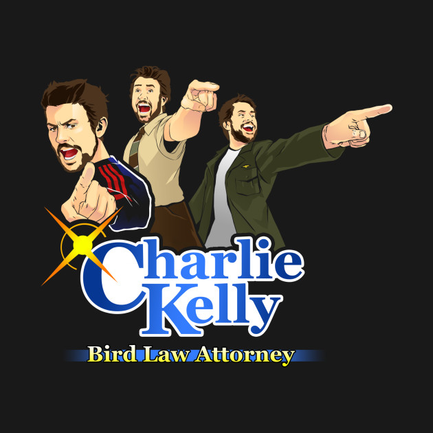 Charlie Kelly: Bird Law Attorney