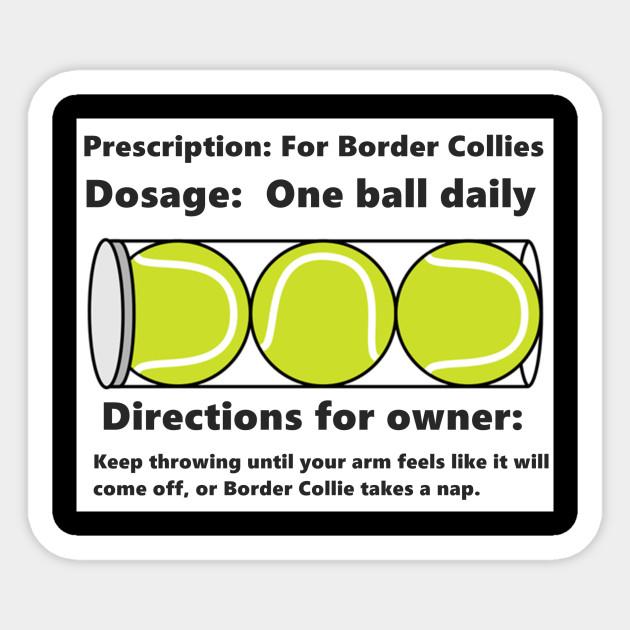 Border Collies Love Tennis Balls Tennis Balls Sticker Teepublic