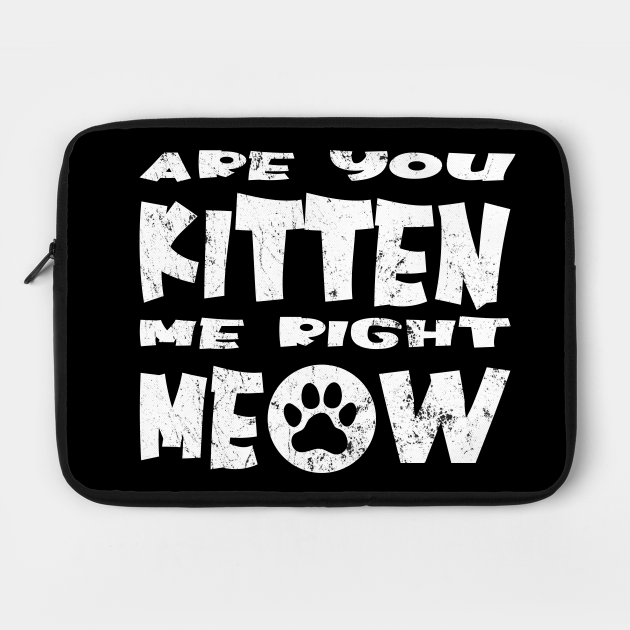 Are You Kitten Me Right Meow, Funny Gift For Cat Lovers, Cat Lovers Gift Ideas, Funny Crazy Cat Lover
