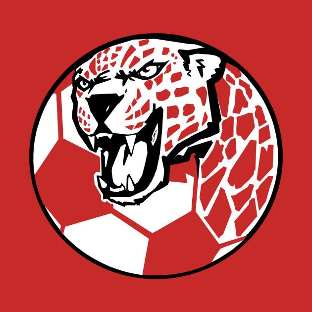 Jaguar Soccer