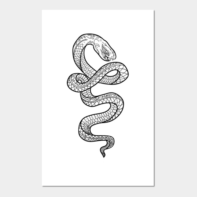 Drawing Little Snake Art Little Snake