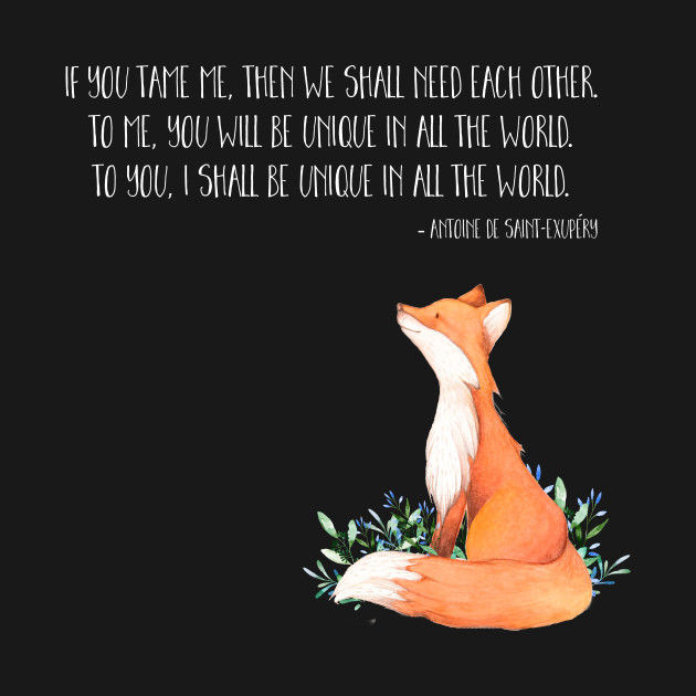 Little Prince fox quote
